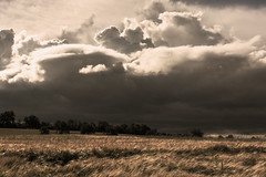 Bedrohlich ! (thunderbird-72) Tags: france abend frankreich felder wolken thunderstorm lorraine fr gewitter frhling abendstimmung lothringen gewitterwolken afsdxnikkor35mmf18g rmeling nikond7100 alsacechampagneardennelorraine alsacechampagneardennelorrain