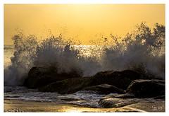 Splash (Shan   Capture Machine) Tags: ocean morning sea sunlight india seascape colors canon drops rocks waves ngc mornings shan splash chennai seashore ecr firstlight twop kovalam cwc collison natgeo eastcoastroad omr canonphotography thedawn 55250 morningscenes oldmahabalipuramroad nammachennai rockstones canon600d chennaiweekendclickers cwcwalk chennaites lifeinchennai mychennai capturemachine shanmuganathanphotography riseabovethewaves walk540