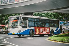 DAEWOO BC212_BD2392_2 (hans-johnson) Tags: china city urban bus canon eos asia shanghai cloudy transport transportation transit daewoo fullframe pudong lujiazui zf eos5d doosan wanxiang ecomat zfecomat dl08 5dmkiii 5dmk3 5dmarkiii 5dmark3 bc212 sxc6120g3 sxc6120g3a sxc6120