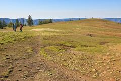 High Meadows (Matthew Singer) Tags: mountains washington unitedstates hiking bluemountains pomeroy scenicviews wenahatucannonwilderness umatillanationalforest