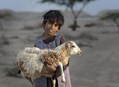 Little Shepherd (ali darwish233) Tags: lighting boy people canon photography photo bahrain sheep shepherd poor علي تصوير راعي photogarpher إضاءة درويش غنم مصور خروف بادية alidarwish