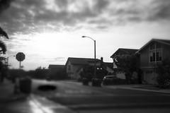 "13/365 - ""Sink Holes"" (Scotch Photo) Tags: street houses gothic suburbia neighborhood vibes sinkholes"