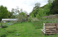 Braziers Park - walled kitchen garden (2) (karenblakeman) Tags: uk may oxfordshire wallingford kitchengarden compostbin fruittrees 2015 southoxfordshire brazierspark ipsden walledkitchengarden
