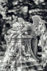 Kodachrome (Thomas Hawk) Tags: bw sculpture usa cemetery angel america texas unitedstates fav50 unitedstatesofamerica houston fav10 fav25 glenwoodcemetery