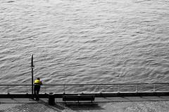 Soledad (Franquito M) Tags: alone river rio dia blanco negro blancoynegro monocromatico monocrome agua water fish fishing waiting esperando espera solitario ondas waves paz peace gris grey aire libre airelibre apoyado apoyarse baranda pesca pescador pescar pescando fisherman day