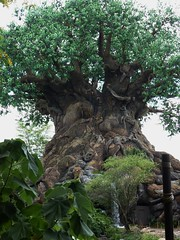 Tree of Life Disney World Animal Kingdom (MisterQque) Tags: disneyworld animalkingdom treeoflife