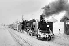 Steam Locomotive (ogawa san) Tags: winter snow japan sl     1973 hokkaidou steamlocomotive c55  soyaline  trainno321