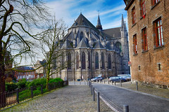 Collegiate Church of St. Waudru in Mons, Belgium (` Toshio ') Tags: road city tree history cars church architecture europe european belgium gothic mons europeanunion toshio waudru xe2 fujixe2 collegiatechurchofstwaudru