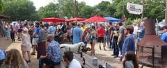 05/15/16 Lee Harvey's (Barn&Col) Tags: people cedars