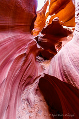 Mtn Sheep Canyon - creative canyon  IMG -605 (Photographer / Artist) Tags: arizona usa nature sandstone navajoland tours lightbeams antelopecanyon flashfloods pagearizona mountainsheepcanyon antelopetours