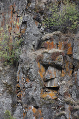 Rock Face on mountain side rural Idaho near the town of Riggins 120821-113136 C4 (Wambeke & Wambeke Photography, Art, & Textiles) Tags: faceinsideofmountain rockface facesinplaces idaho idaholandscape idahomountain sideofrockymountain ruralidaho charliewambekephotography canoneos60dphotograph wambekewambekephotographyarttextiles