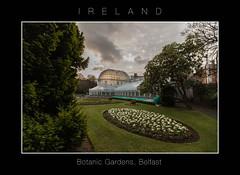(Mirco Baccaille) Tags: botanicgardens belfast irlanda ireland giardino botanico giardinobotanico