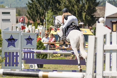 DSC00970_s (AndiP66) Tags: springen auffahrtspringen auffahrt wolfwil solothurn 2016 mai may 5mai2016 pferd horse schweiz switzerland kantonsolothurn cantonofsolothurn concours wettbewerb horsejumping springreiten pferdespringen equestrian sports pferdesport sport sony sonyalpha 77markii 77ii 77m2 a77ii alpha ilca77m2 slta77ii sony70400mm f456 sony70400mmf456gssmii sal70400g2 andreaspeters ch