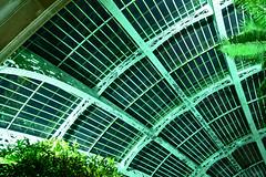 Laken (DST_4425) (huaphotography) Tags: brussels plant belgium belgi greenhouse brussel  laken serre