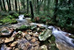 Rego da Fraga (f@gra) Tags: wood trees tree rio river landscape spain agua arboles sony silk paisaje galicia bosque effect aire seda libre arroyo fraga cascada efecto rego