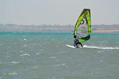 16_06_2016 (playkite) Tags: kite vacations egypt gouna hurghada 2016 summer fun