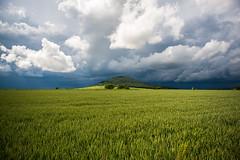 Landscape Hochsauerland (steffen_brauer) Tags: nature landscape deutschland nikon d750 nikkor landschaft hochsauerland