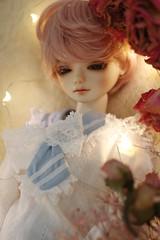 Eloi (fever _) Tags: louis doll bjd abjd msd bluefairy louisv