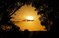 (mblaeck) Tags: trees sunset sky orange sun yellow sundown dusk darwin frame mindilbeach treeframe darwinsunset