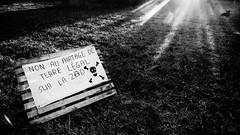 """#zad #NDDL: #NDL2015: """"Non au partage de terre legal sur la ZAD (terres de #Vinci mais toujours cultivees) (ValK.) Tags: nddl ndl2015 zad bpbo manifestation notredamedeslandes politique valk vinci aeroport agriculture climat collectifbonpiedbonoeil ecologie lutte nature renaturation resistance resistence resistencia social france fr"""