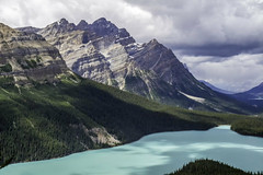 ajn_20160731-045_web (aj Needham) Tags: icefieldsparkway banff peytolake mountain lake turquoise