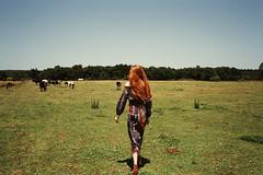 (Can Sever) Tags: sky sun colour girl analog 35mm cow fujifilm