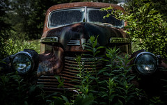 (Rodney Harvey) Tags: abandoned chevrolet car maine rust chrome grill headlights rural decay