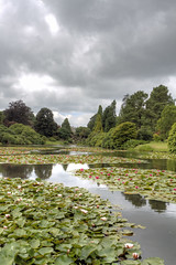 Cloudy Sheffield Park (Craig Williams Photography) Tags: sheffieldpark cloudy waterlillies eastsussex nationaltrust