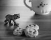 Tea time (Tonton Dave) Tags: bear monochrome biscuits ours teat