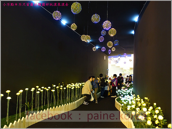 高陽國際花卉博覽 (60).JPG