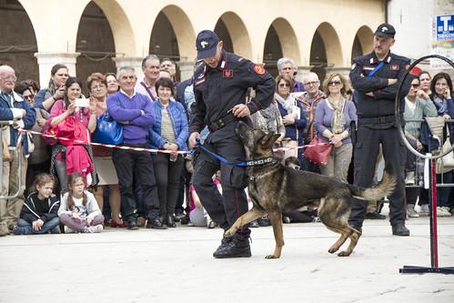 cinofili_a_norcia_in_piazza-001_da_raw