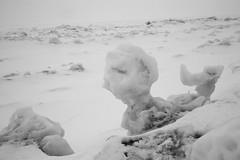 The Merman (peterkelly) Tags: winter bw snow ontario canada ice digital greatlakes northamerica lakehuron merman grandbend pineryprovincialpark