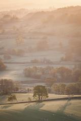 Morning Light (Danny Birrell) Tags: morning trees light sun mist nature beautiful sunrise canon landscape golden lakedistrict tamron canon5dmkii tamron7020028vc