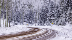 Snowing On Hyde Park Road (Mabry Campbell) Tags: road trees winter usa white snow newmexico santafe nature landscape photography countryside photo december photographer image unitedstatesofamerica 1600 hasselblad f90 photograph april snowing 24mm curve fineartphotography 2016 2015 commercialphotography santafecounty sec mabrycampbell h5d50c hcd24 april222016 20160422campbellb0001261