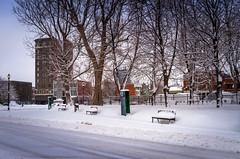 2016Fev-Vieux TR-16 (jdbrochu) Tags: photographie hiver troisrivieres ville laneige pleinair batisse vieuxtroisrivieres