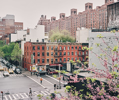 Chelsea in early Spring (Thomasaurus) Tags: street newyorkcity mamiya film chelsea manhattan highline kodakportra400 7ii porostocky