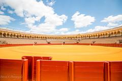 Les arnes de Sville (Patrick CM) Tags: plaza red clouds canon rouge sevilla bull seville arena nuage arene bullfight toro andalousie