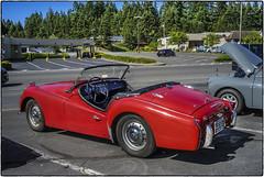 Triumph TR3 (NoJuan) Tags: red voigtlander triumph a7 sportscar redcar tr3 ultron vintagesportscar fotodiox redsportscar shorelinewa fotodioxadapter sonya7 carscoffeeseattle coffeeandcarsseattle