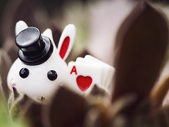 Mad Hatter White Rabbit (Jam-Gloom) Tags: cute japan toy toys olympus cheeks chan kawaii omd japanesetoy hoppe toyphotography em5 cutetoy toyography kawaiitoy olympusomd olympusomdem5 hoppechan cheekschan