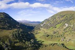 Ryvoan Pass (James Shooter) Tags: coirechaorach june landscape morning scotland aerial cairngorms cairngormsnationalpark caledonian forest glenmore highlands mountainous mountains nationalpark pinewood ryvoanpass scotspine summer sunrise woodland
