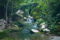 Capelli di Venere_01 (picture_on) Tags: casaletto spartano salerno nature natura river fallen capelli di venere fiume wild nikond700 cascata nikon2470mm