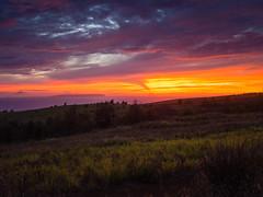 Niihau Sunset (lunkerbuster808) Tags: kauai hawaii westside sigma olympus em10 19mm island niihau