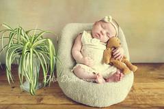 newborn photography ny (Dalia Drulia) Tags: newborn newbornphotographynyc newbornphotographerny druliaphotography drulia infantphotographerny kidsphotographerny babies baby babyphotography canon canon5dmark2 sleeping