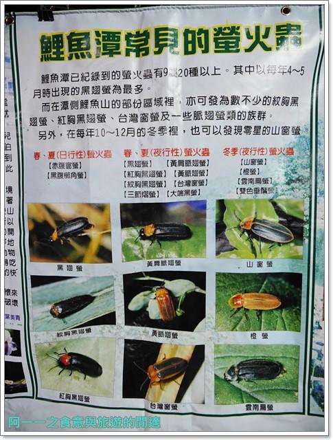 花蓮鯉魚潭螢火蟲賞蝴蝶青陽農場攝影花蓮旅遊image027
