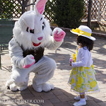 "Alpine Easter Bunny • <a style=""font-size:0.8em;"" href=""http://www.flickr.com/photos/52876033@N08/16904090780/"" target=""_blank"">View on Flickr</a>"