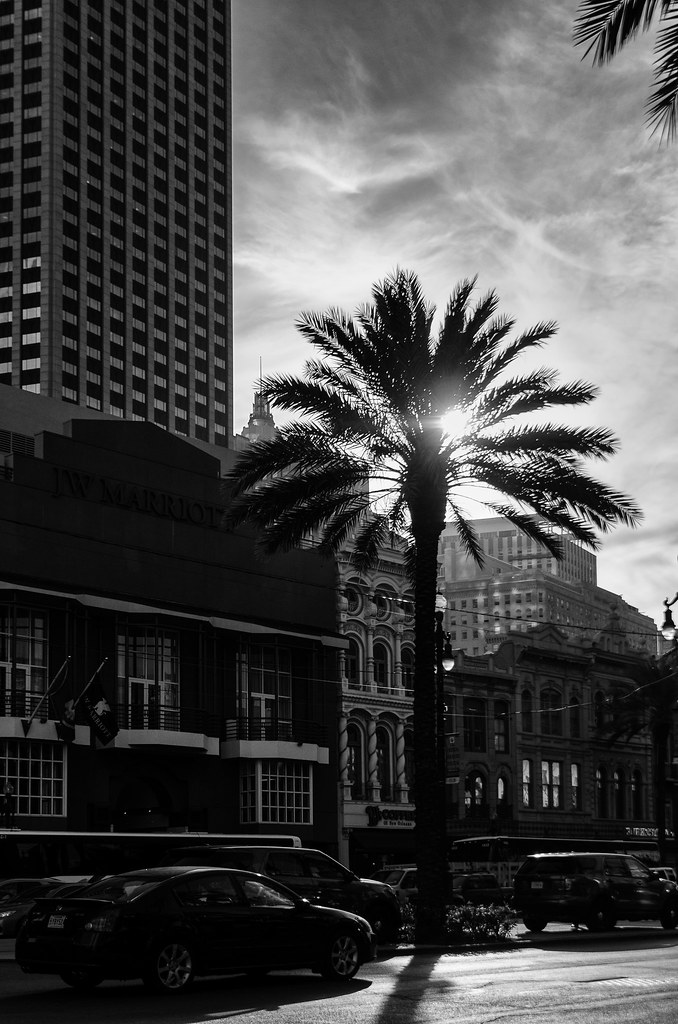 People and Places - New Orleans 2015 BW 11.jpg
