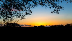 Sway Tower Spring Sunset (StephenSmithPhoto) Tags: sunset landscape countryside englishcountryside farmfields stephensmith springsunset swaytower hampshirephotographer hampshirephotography stephensmithphotography swsmithphoto lymingtonphotographer lymingtonphotography swayfields swaytowersunset