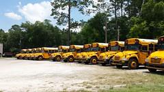 2014 Blue Bird Visions (abear320) Tags: blue school bus bird florida district gainesville vision schools alachua