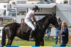 DSC06983_s (AndiP66) Tags: horse sports sport schweiz switzerland sony may mai alpha concours pferd equestrian solothurn ch horsejumping wettbewerb springen 2015 auffahrt f456 kantonsolothurn pferdesport sonyalpha springreiten andreaspeters wolfwil cantonofsolothurn pferdespringen sony70400mm 77m2 sal70400g2 sony70400mmf456gssmii a77ii ilca77m2 77ii 77markii slta77ii auffahrtspringen