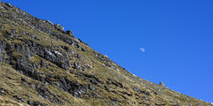 Scree (GDDigitalArt) Tags: nature sunshine rural scotland daylight outdoor hiking benlomond lochlomond